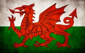 Welsh Grungy Flag
