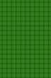 Green Background for the St. Patricks Day