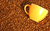 Coffee Beans and Yellow Cup