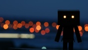 Danboard and the Lights of the Big City